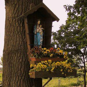 73. Mariakapelletje aan de Oldenzaalseweg in Tubbergen
