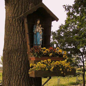 73. Mariakapelletje, Oldenzaalseweg, Tubbergen